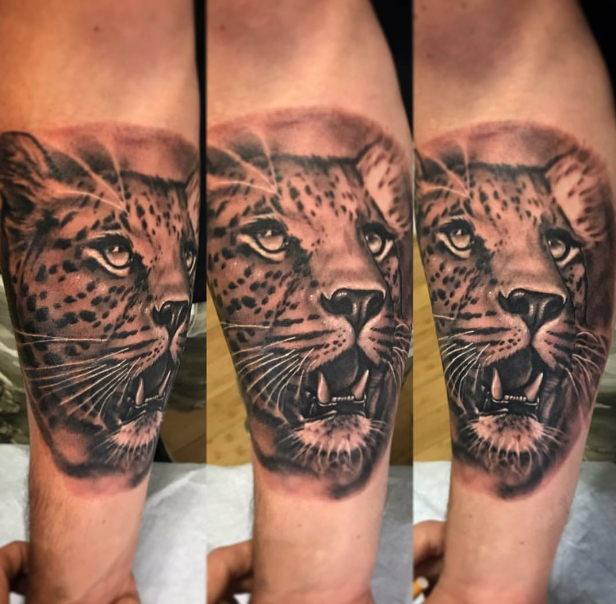 MitchellCanter Tattoos18